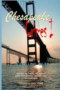 Chesapeake Crimes 1